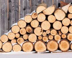 Малоимущие семьи РЮО обеспечены дровами от «Красного Креста»