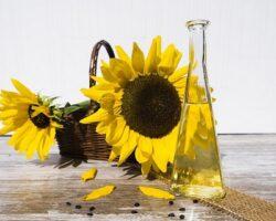 На Ставрополье сумели в 2 раза увеличить экспорт растительного масла