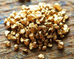 Золотосодержащие руды: в Чечне начнут поиск месторождений
