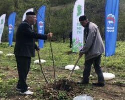 «Сад Памяти»: в возрождаемом селении Даттых посажено почти 2 тысячи деревьев